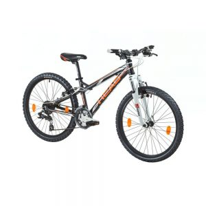 "Head Ridott I 24"" (2016) or Action Bikes"
