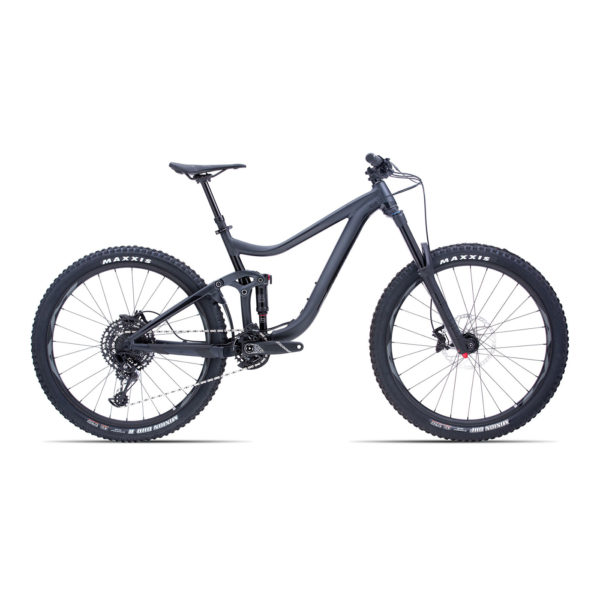 "GIANT Reign 2 GE 27.5"" (2019) Action-Bikes"